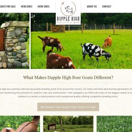 Dapple High Boer Goats